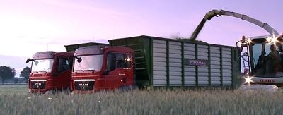 aggro trucks hybrid rye