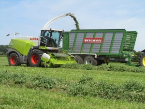 Bergmann Silage trailer HTW with class jaguar grass silage