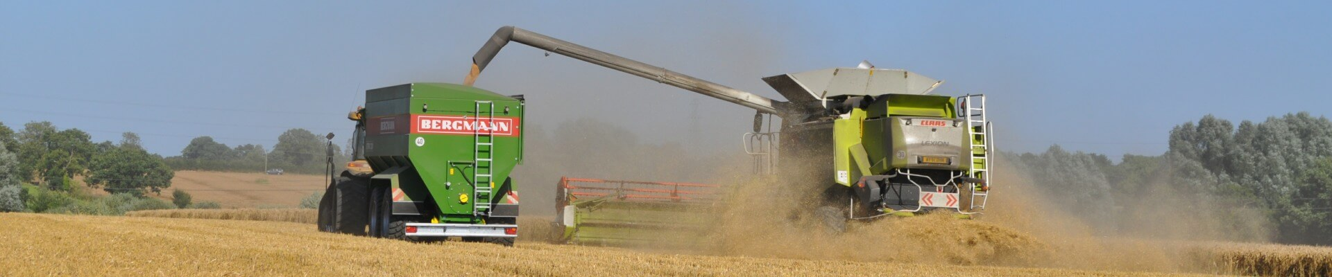 grain chaser bin bergmann wheat harvest with class combine