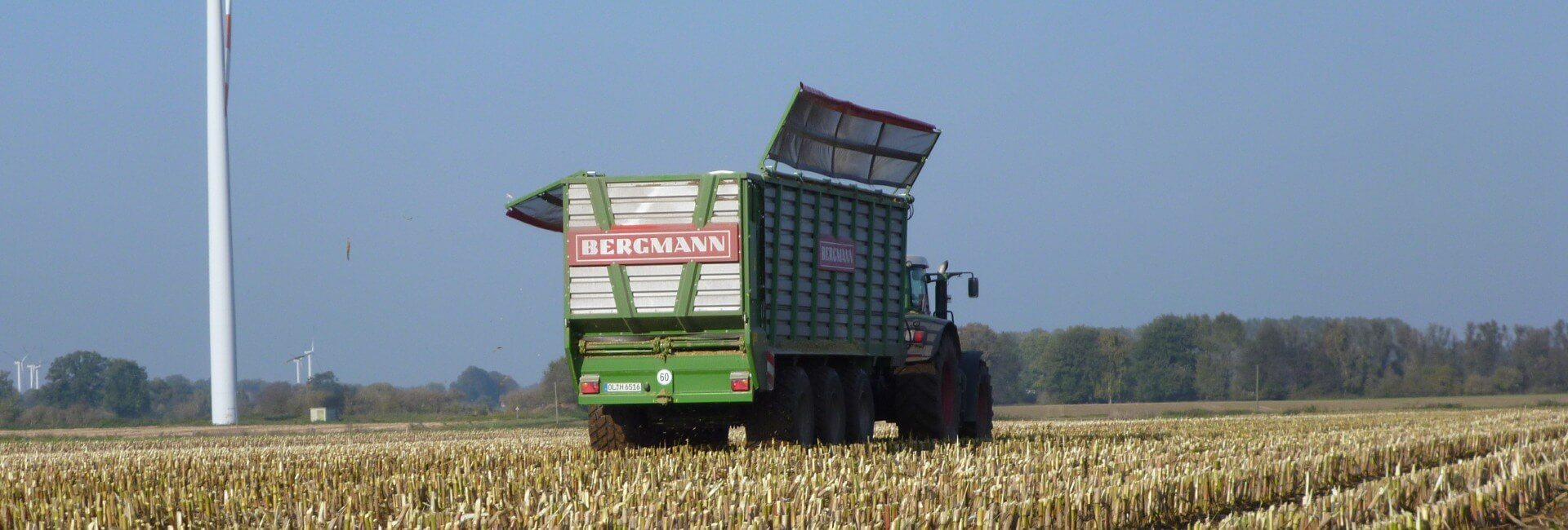 Bergmann silage trailer with covers maize harvest