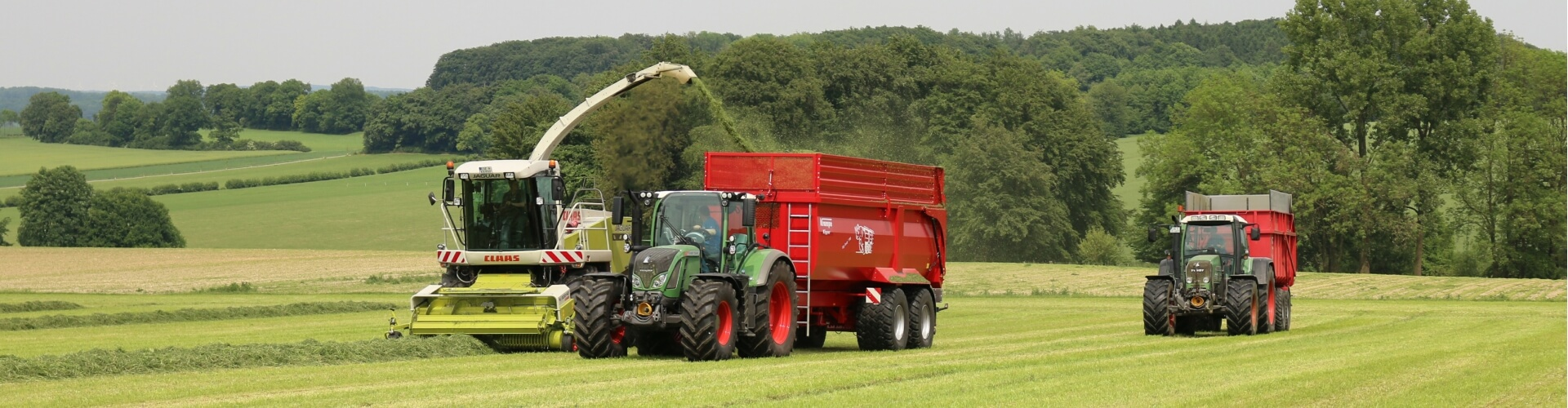 grass silage harvest