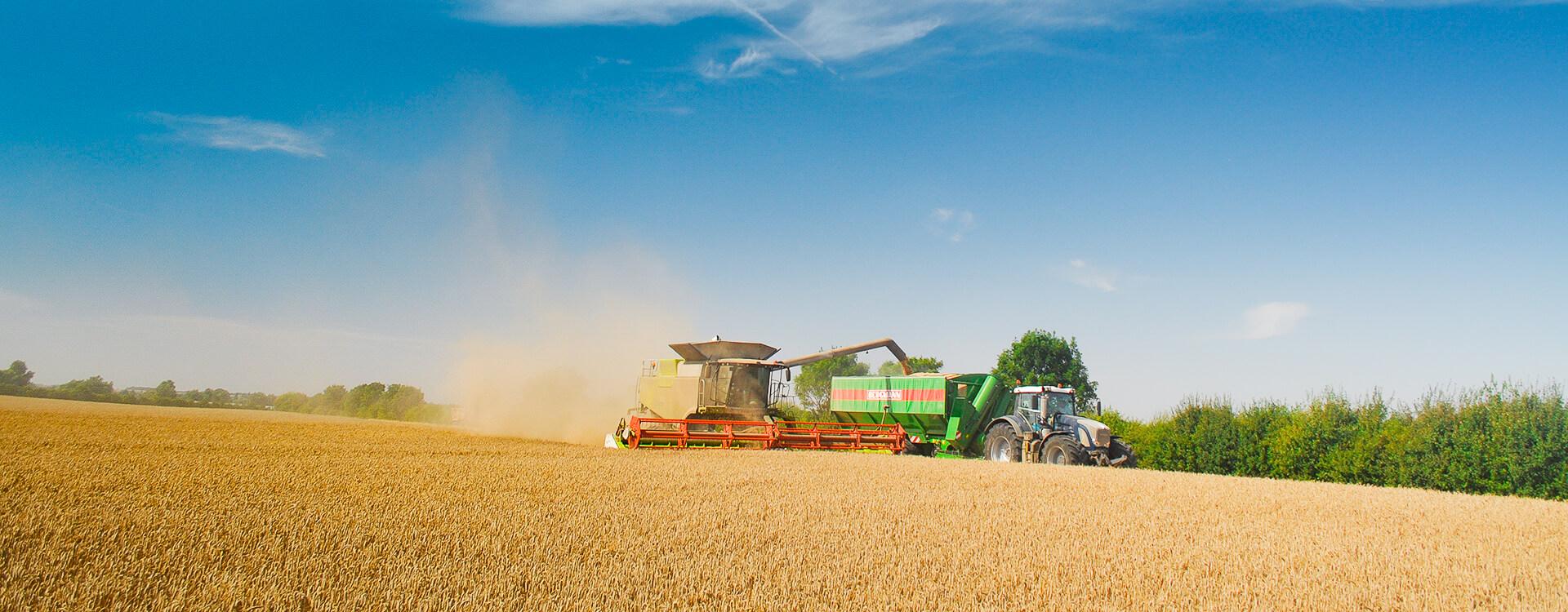 Grain Chaser wagon
