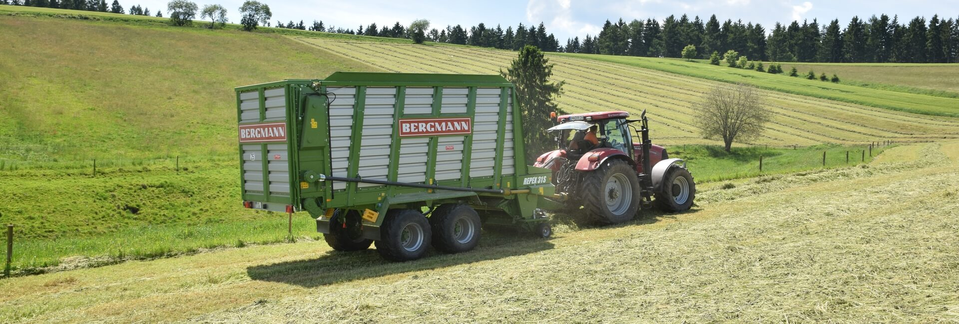 Silage wagon harvesting grass with a short chop