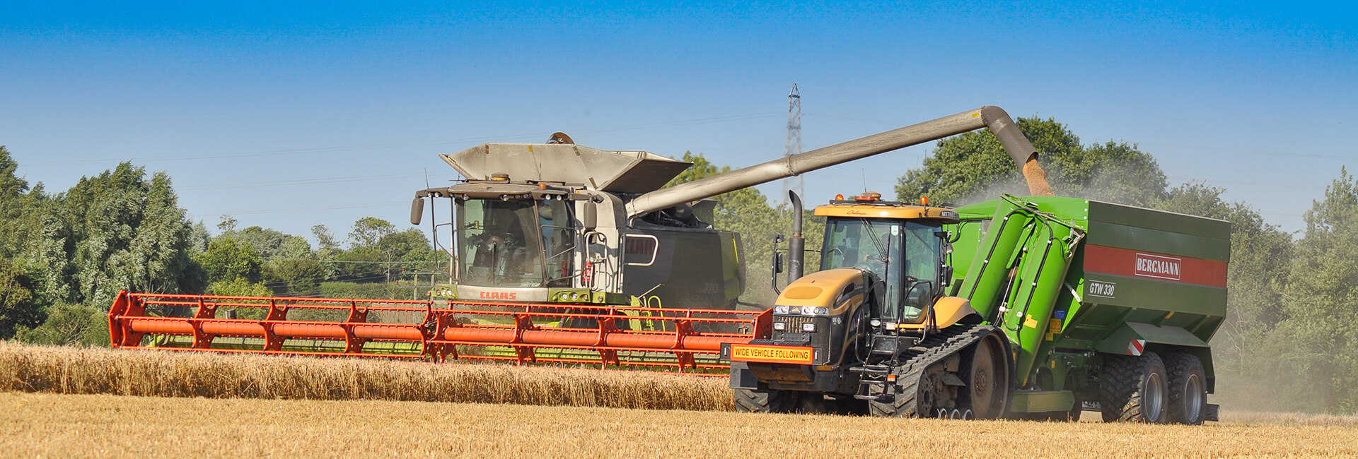 Challenger and grain chaser bin wheat harvest UK