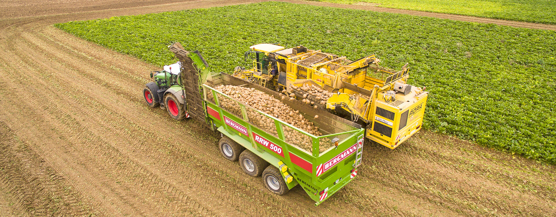 Bergmann sugar beet chaser with ropa washer harvester